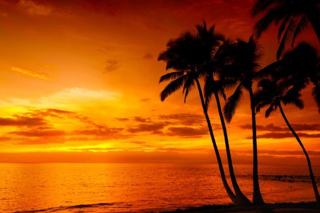 ハワイの基本情報