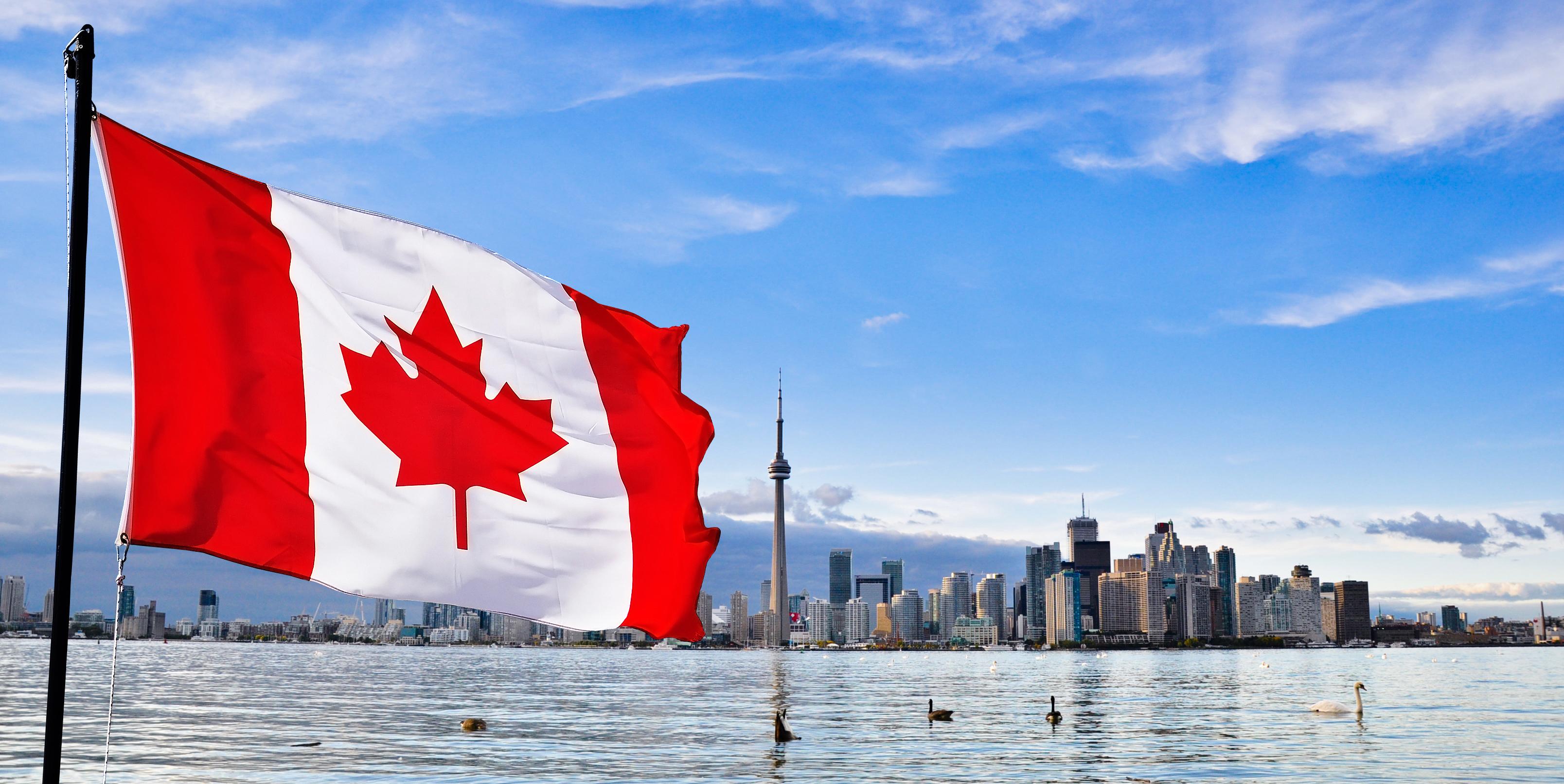 ワーホリ in カナダ / 英語 × 海外就労経験