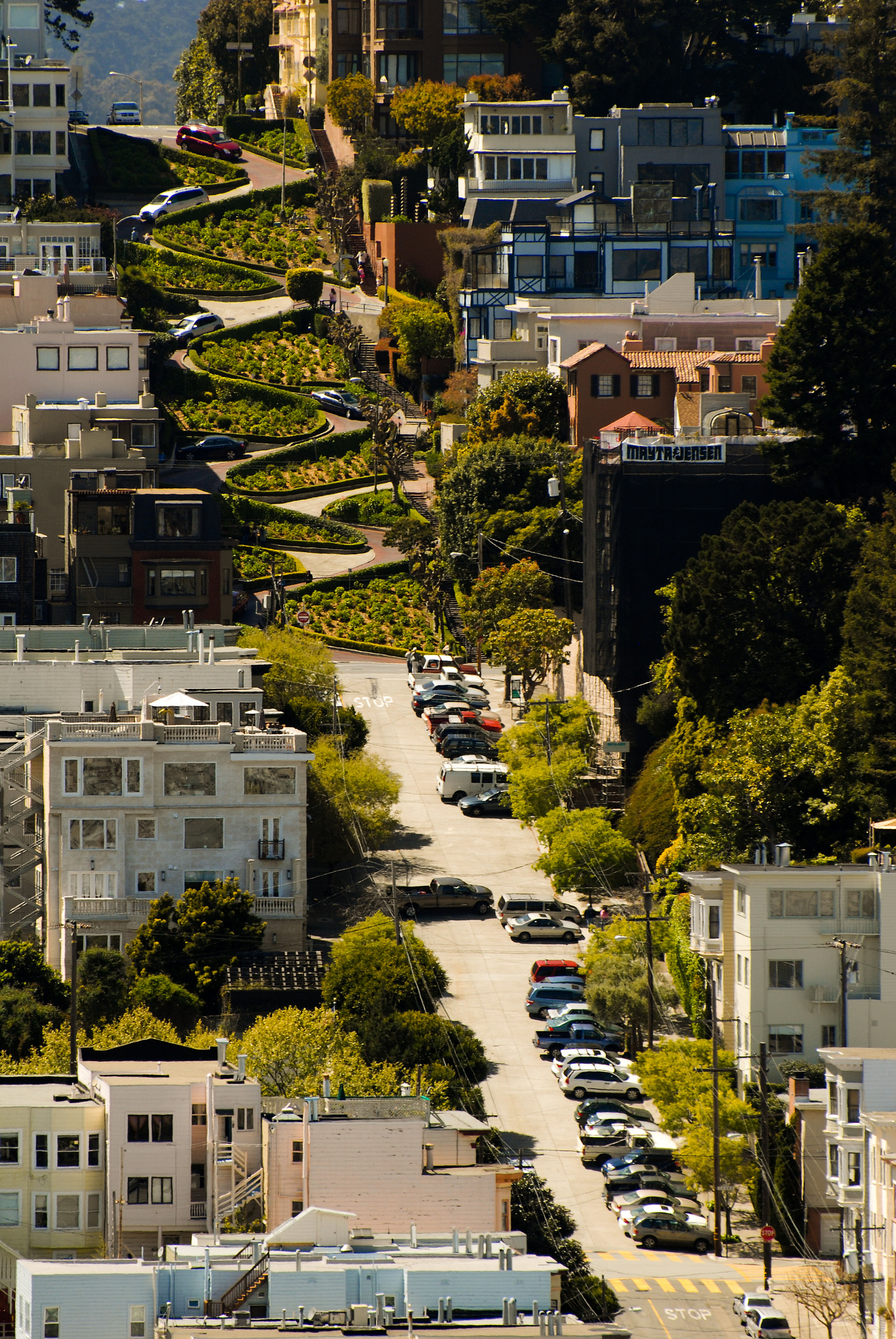 サンフランシスコといえば坂の町!