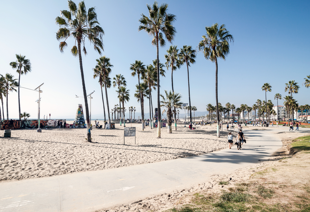 ロサンゼルスでインターンシップ