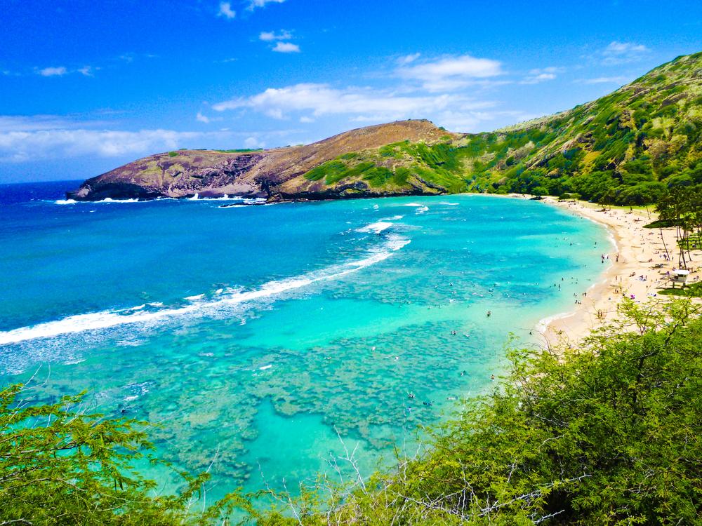 ハワイを満喫できる、魅力いっぱいの留学!