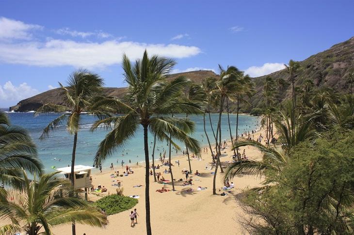 自由時間はビーチへ行きたい放題!
