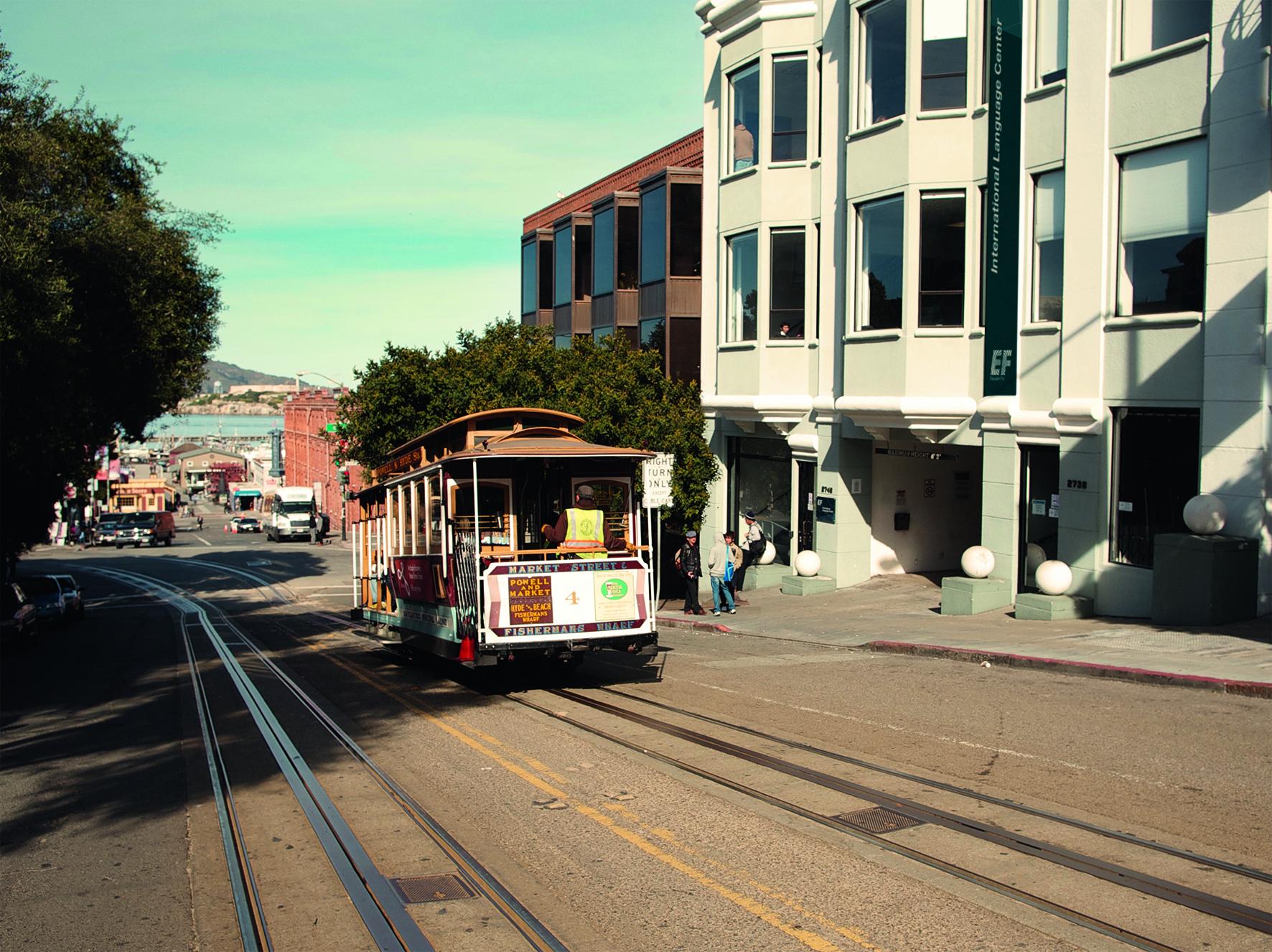 自然と都会が融合した街、サンフランシスコの街並み