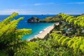【体験談】ニュージーランドの語学留学!充実の3か月を過ごしました♪