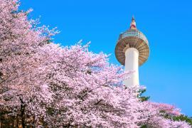 【体験談】韓国に語学留学!いろんな魅力を発見しました♪