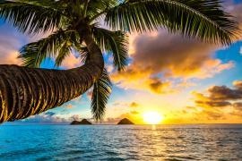 【体験談】語学留学にチャレンジして、ハワイ生活を満喫しました!