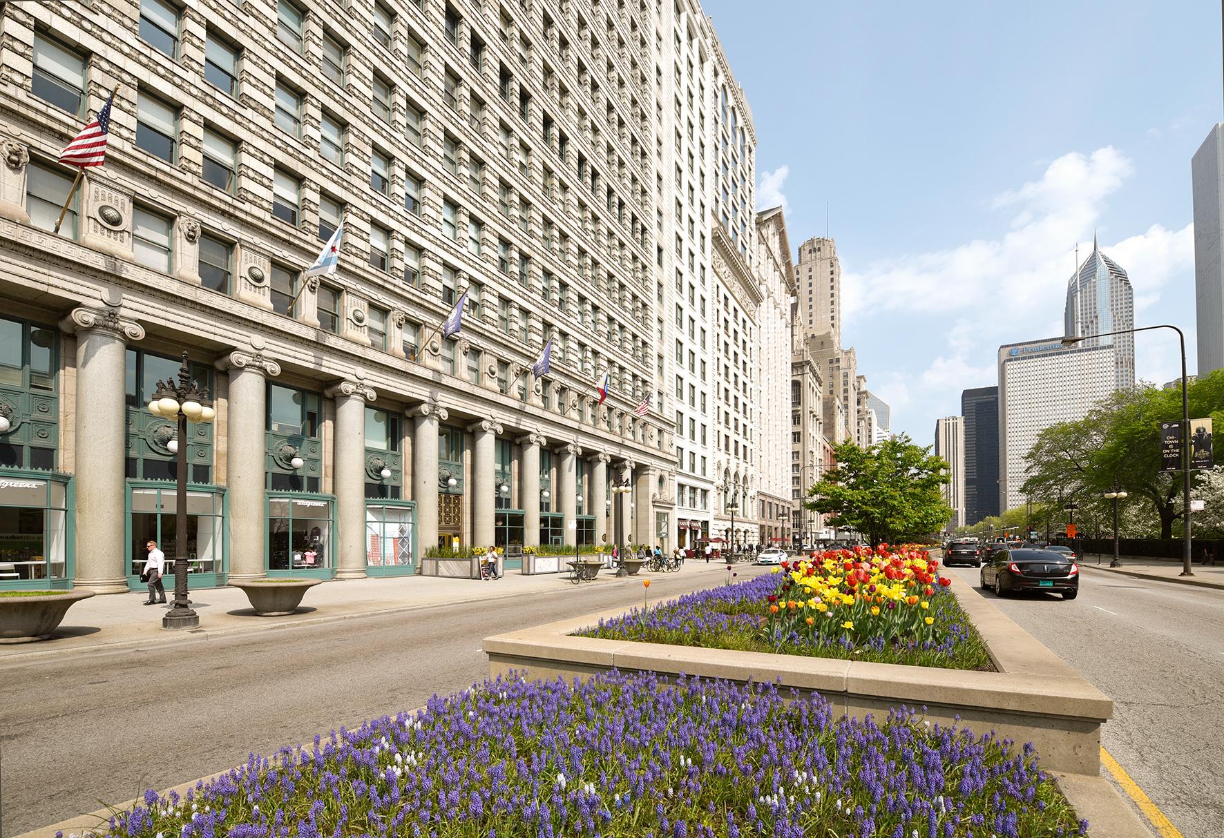 市内中心地にあるEFシカゴ校
