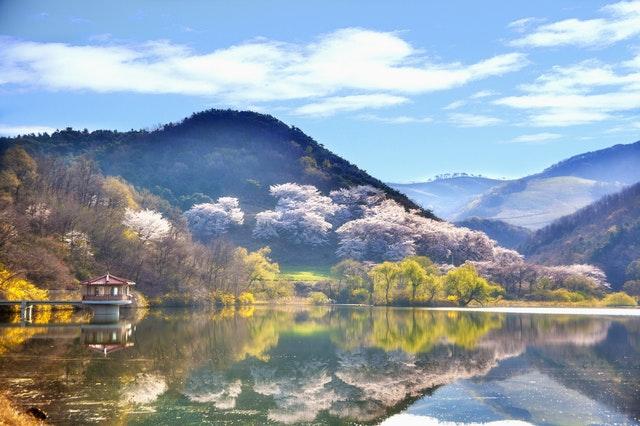 週末はホストファミリーと郊外へ出かけたり韓国での生活を満喫しよう♪