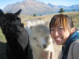 『世界一周フォトたび』のブロガーucaさんに直撃インタビュー!ニュージーランドのワーキングホリデーでの体験を聞きました★