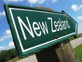 【体験談】ニュージーランドでのワーキングホリデー経験が就職につながった!