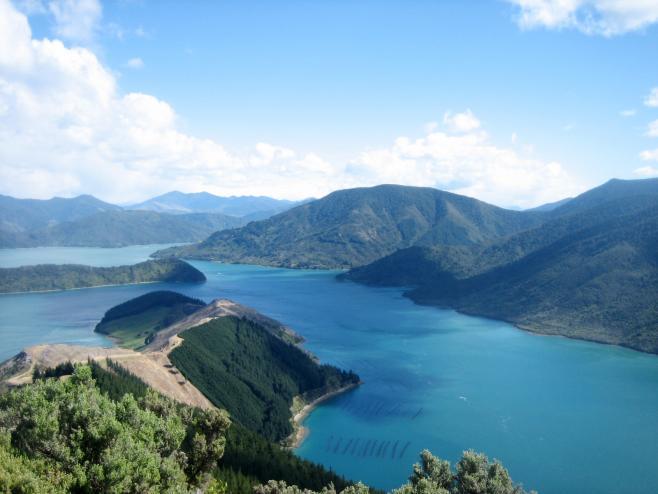 ニュージーランドの風景①